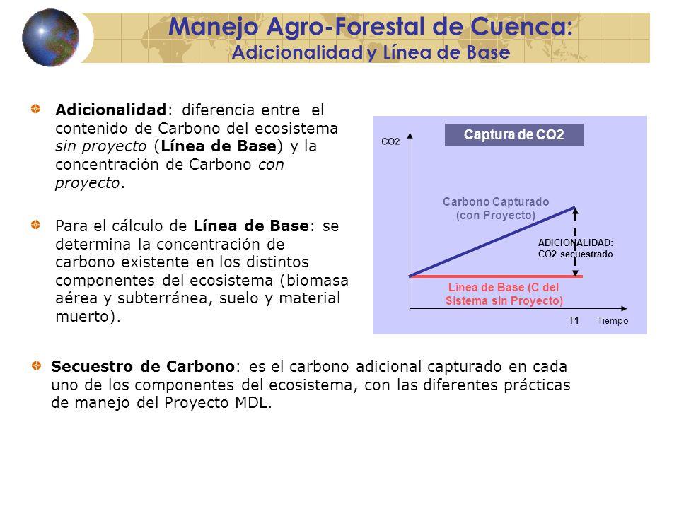 Manejo Agro-Forestal de Cuenca: Adicionalidad y Línea de Base Tiempo CO2 Captura de CO2 Carbono Capturado (con Proyecto) Línea de Base (C del Sistema sin Proyecto) T1 ADICIONALIDAD: CO2 secuestrado Adicionalidad: diferencia entre el contenido de Carbono del ecosistema sin proyecto (Línea de Base) y la concentración de Carbono con proyecto.
