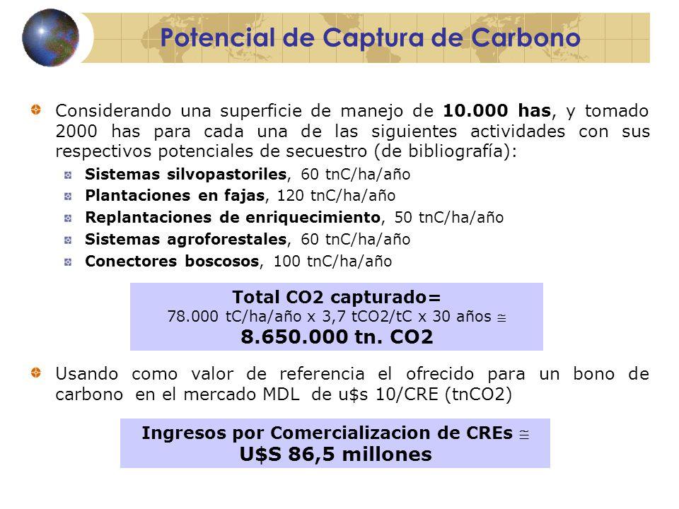 Potencial de Captura de Carbono Considerando una superficie de manejo de 10.000 has, y tomado 2000 has para cada una de las siguientes actividades con sus respectivos potenciales de secuestro (de bibliografía): Sistemas silvopastoriles, 60 tnC/ha/año Plantaciones en fajas, 120 tnC/ha/año Replantaciones de enriquecimiento, 50 tnC/ha/año Sistemas agroforestales, 60 tnC/ha/año Conectores boscosos, 100 tnC/ha/año Usando como valor de referencia el ofrecido para un bono de carbono en el mercado MDL de u$s 10/CRE (tnCO2) Total CO2 capturado= 78.000 tC/ha/año x 3,7 tCO2/tC x 30 años  8.650.000 tn.