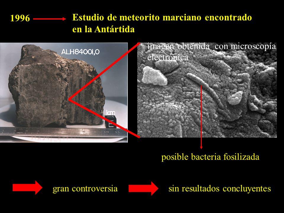 1996 Estudio de meteorito marciano encontrado en la Antártida imagen obtenida con microscopía electrónica posible bacteria fosilizada gran controversiasin resultados concluyentes