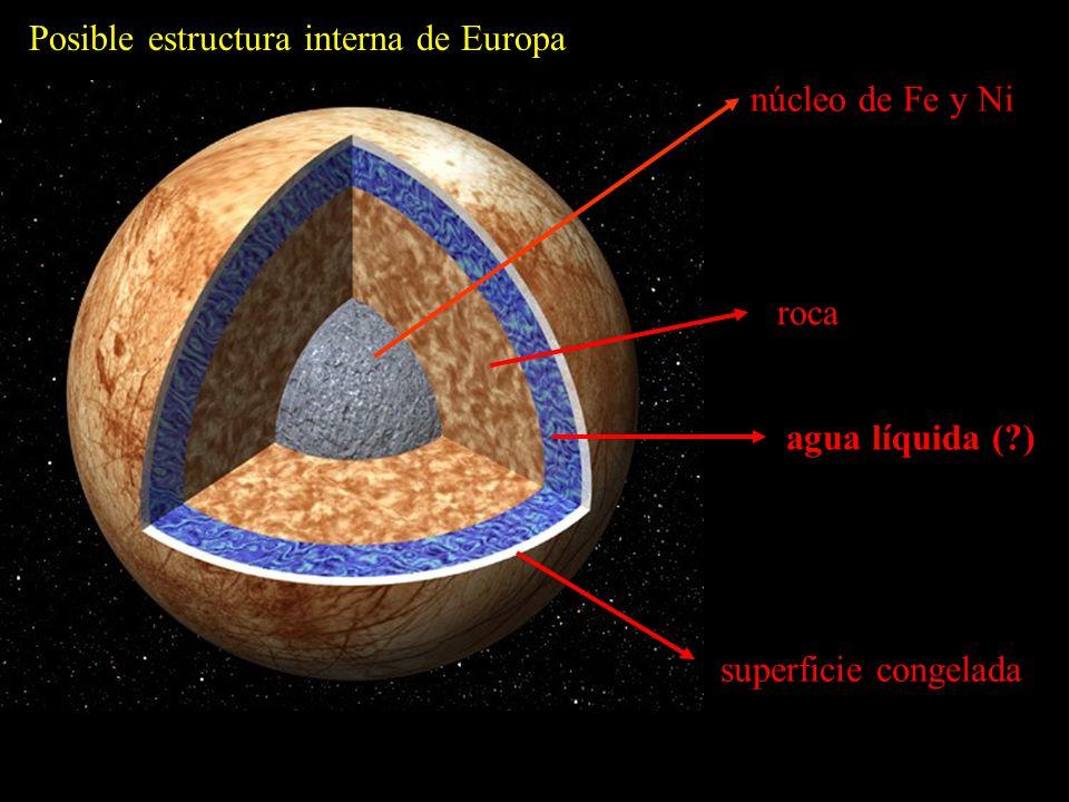 Posible estructura interna de Europa núcleo de Fe y Ni roca agua líquida ( ) superficie congelada