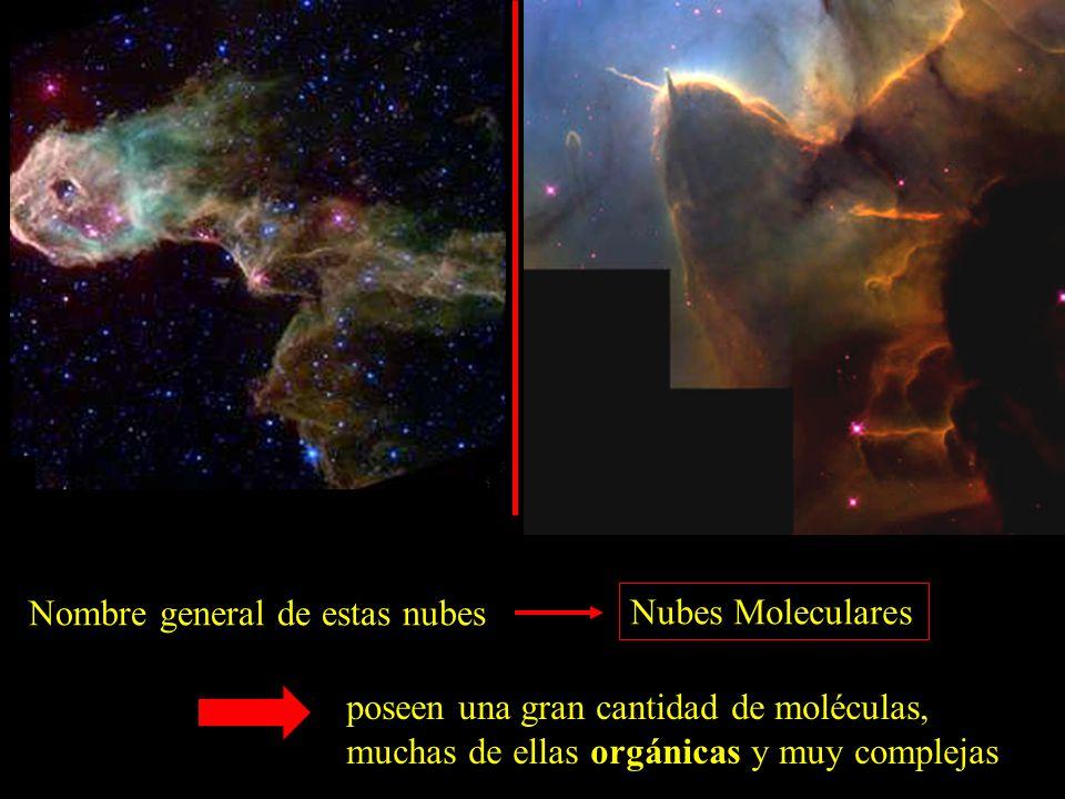 Nombre general de estas nubes Nubes Moleculares poseen una gran cantidad de moléculas, muchas de ellas orgánicas y muy complejas