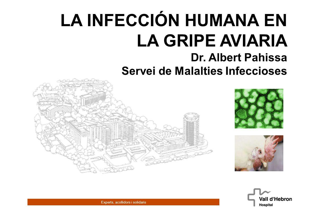 Experts, acollidors i solidaris LA INFECCIÓN HUMANA EN LA GRIPE AVIARIA Dr.