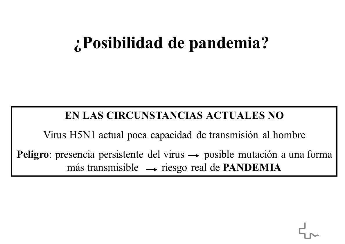 ¿Posibilidad de pandemia.