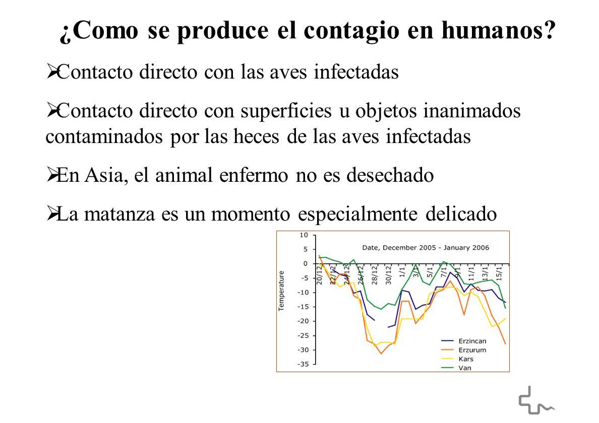 ¿Como se produce el contagio en humanos.