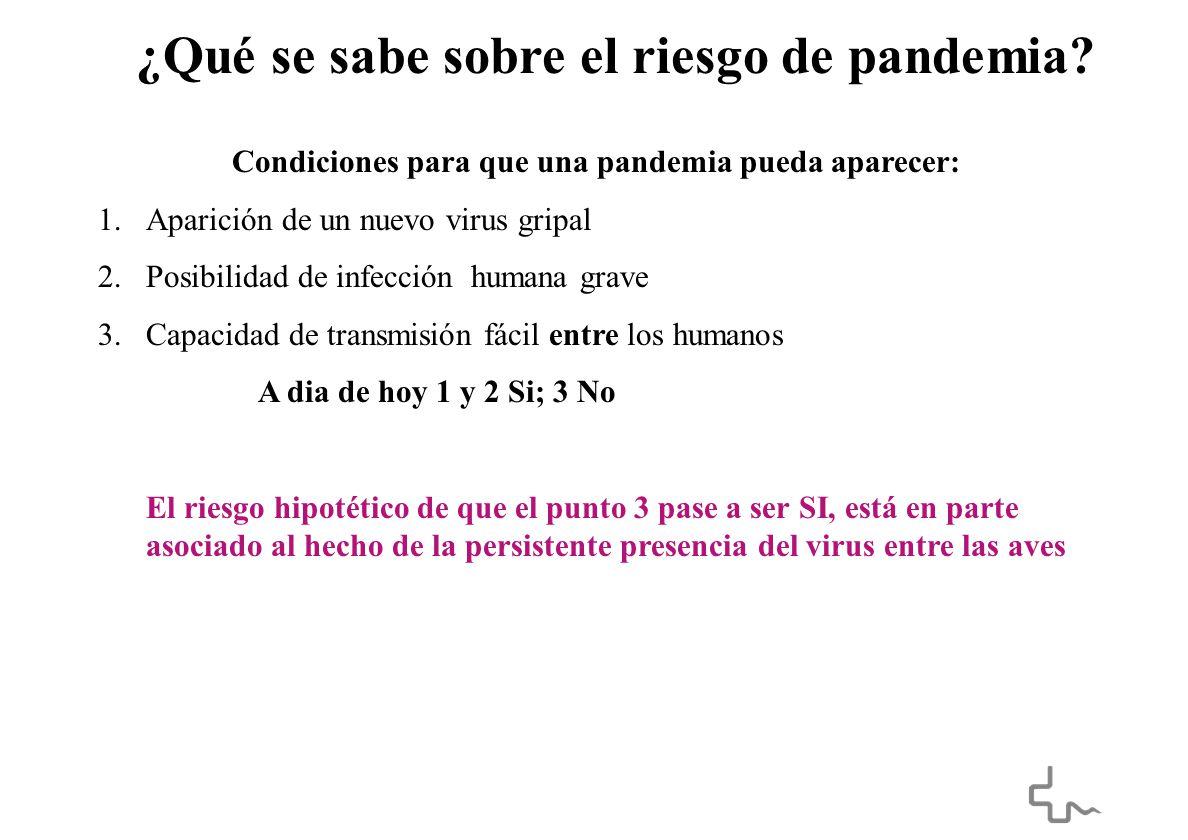 ¿Qué se sabe sobre el riesgo de pandemia.