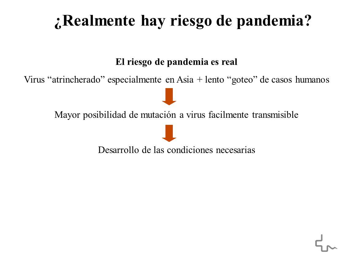 ¿Realmente hay riesgo de pandemia.