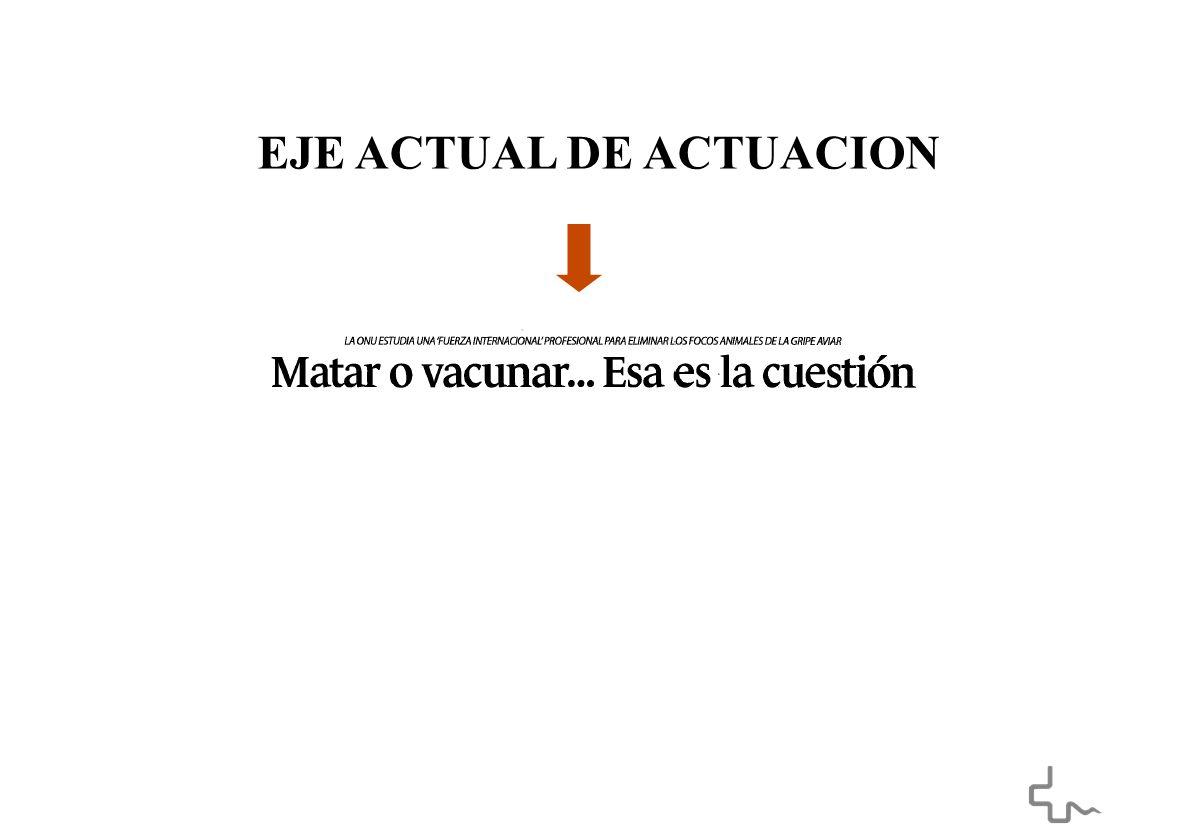 EJE ACTUAL DE ACTUACION