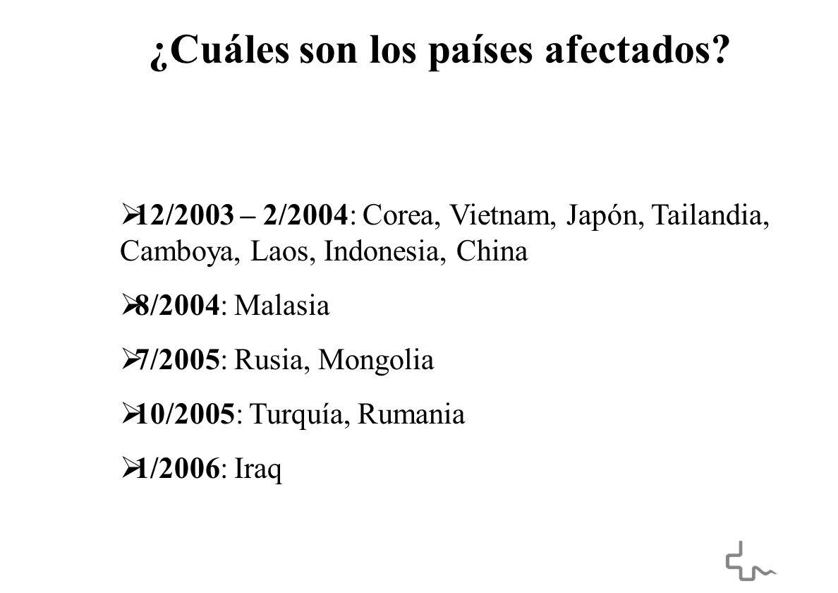 ¿Cuáles son los países afectados.