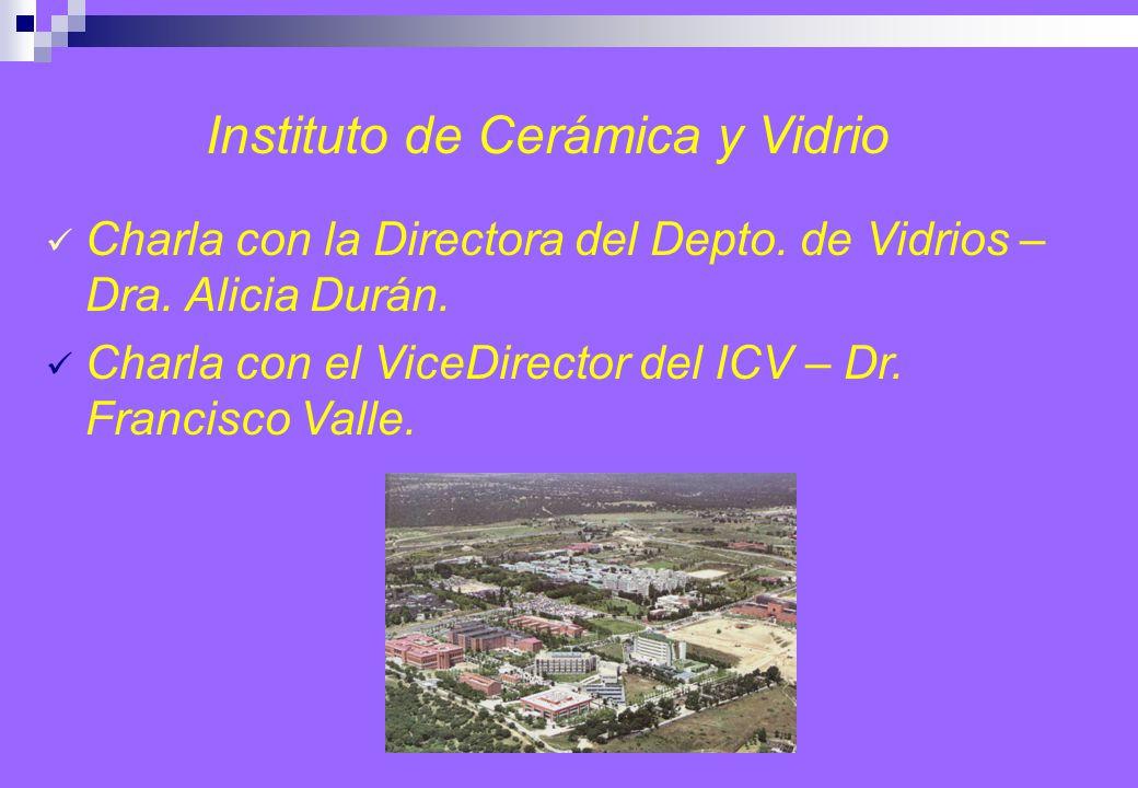 Instituto de Cerámica y Vidrio Charla con la Directora del Depto.