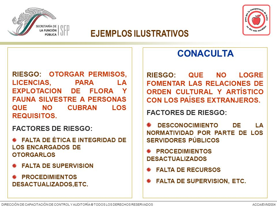 DIRECCIÓN DE CAPACITACIÓN DE CONTROL Y AUDITORÍA ® TODOS LOS DERECHOS RESERVADOSACCA/EVM2004 EJEMPLOS ILUSTRATIVOS RIESGO: OTORGAR PERMISOS, LICENCIAS, PARA LA EXPLOTACION DE FLORA Y FAUNA SILVESTRE A PERSONAS QUE NO CUBRAN LOS REQUISITOS.