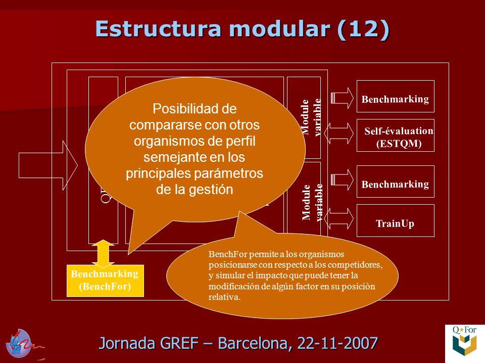 Jornada GREF – Barcelona, 22-11-2007 QFor Data Scan QFor Process Scan QFor Client Scan Module variable Benchmarking TrainUp Benchmarking Self-évaluation (ESTQM) Benchmarking (BenchFor) Posibilidad de compararse con otros organismos de perfil semejante en los principales parámetros de la gestión BenchFor permite a los organismos posicionarse con respecto a los competidores, y simular el impacto que puede tener la modificación de algún factor en su posiciòn relativa.