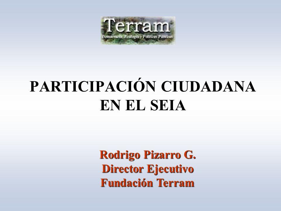 PARTICIPACIÓN CIUDADANA EN EL SEIA Rodrigo Pizarro G. Director Ejecutivo Fundación Terram