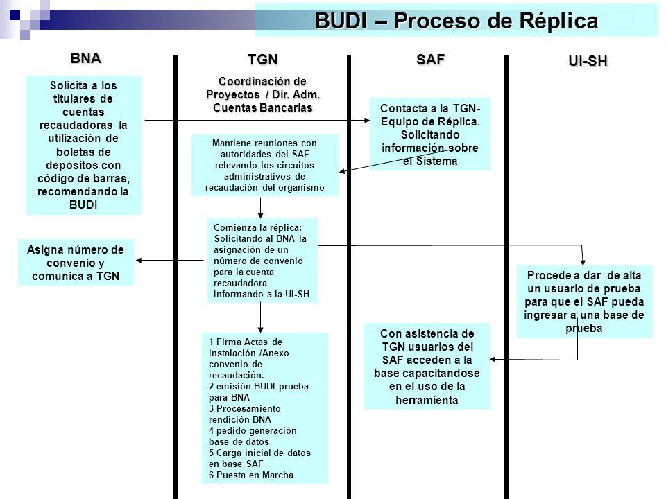 BUDI – Proceso de Réplica TGN Coordinación de Proyectos / Dir.