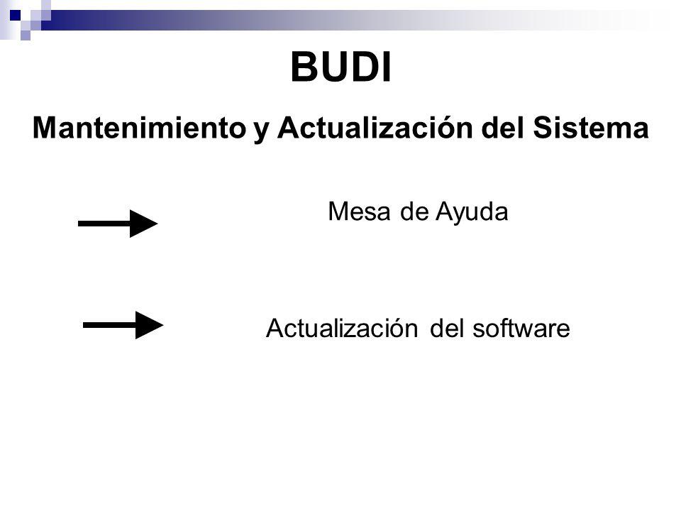 BUDI Mantenimiento y Actualización del Sistema Mesa de Ayuda Actualización del software