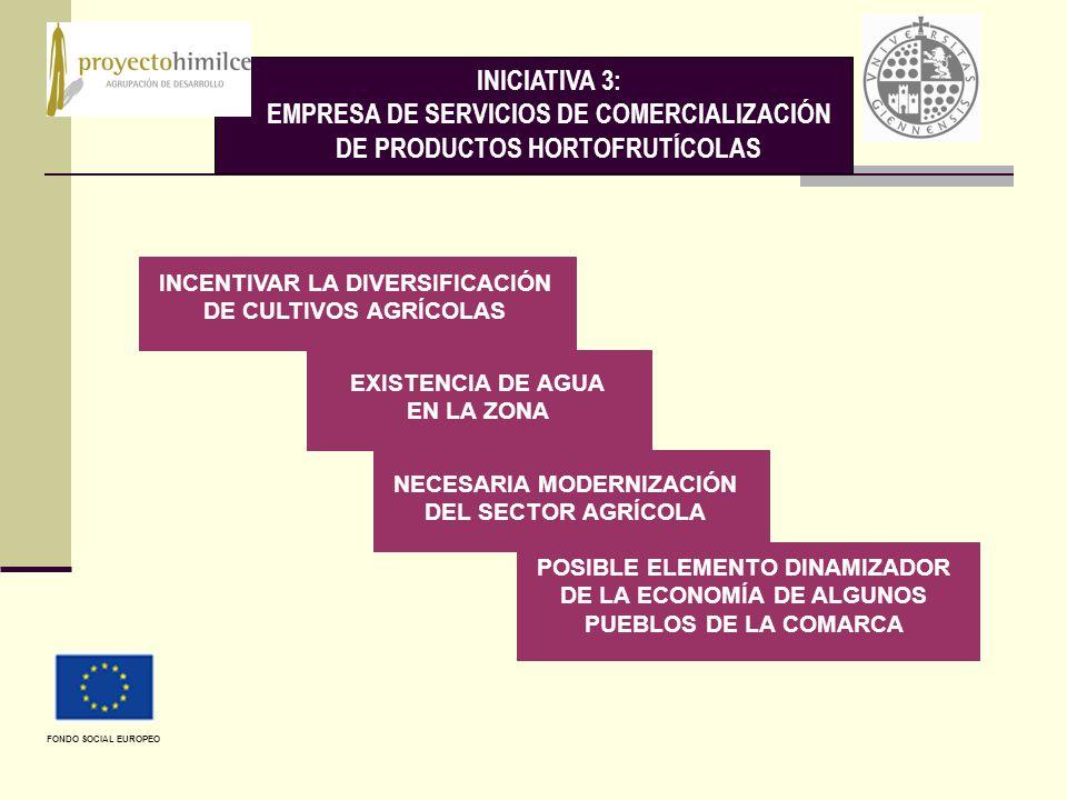 INICIATIVA 3: EMPRESA DE SERVICIOS DE COMERCIALIZACIÓN DE PRODUCTOS HORTOFRUTÍCOLAS INCENTIVAR LA DIVERSIFICACIÓN DE CULTIVOS AGRÍCOLAS EXISTENCIA DE AGUA EN LA ZONA NECESARIA MODERNIZACIÓN DEL SECTOR AGRÍCOLA POSIBLE ELEMENTO DINAMIZADOR DE LA ECONOMÍA DE ALGUNOS PUEBLOS DE LA COMARCA FONDO SOCIAL EUROPEO