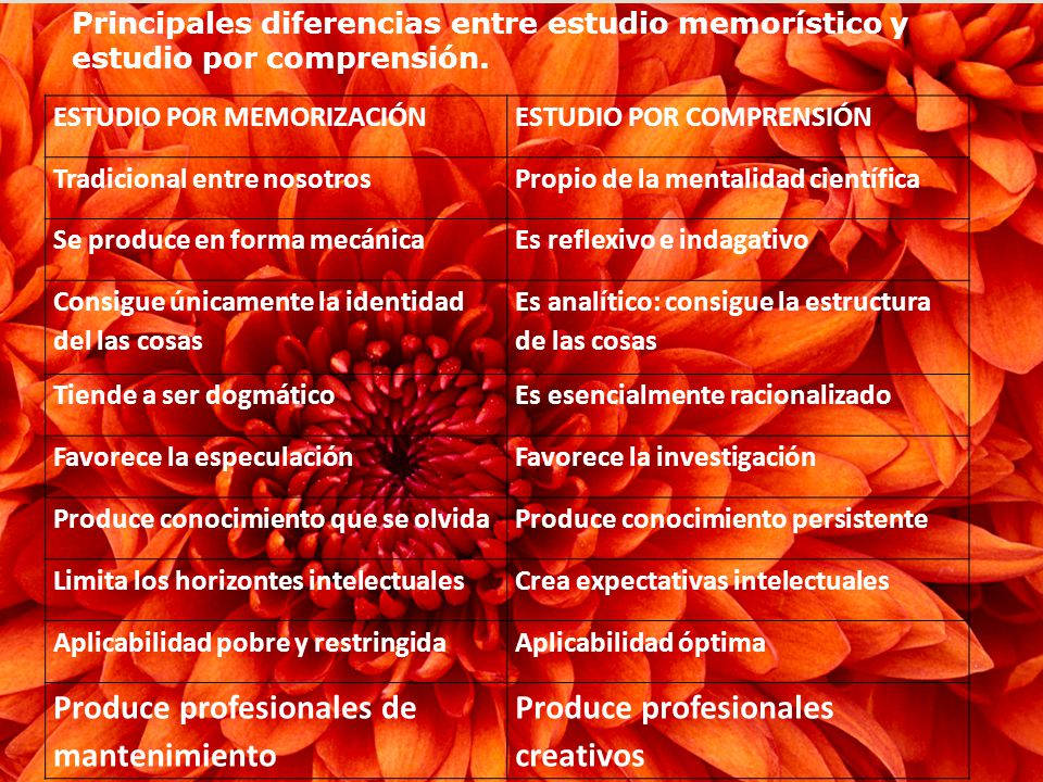 Principales diferencias entre estudio memorístico y estudio por comprensión.