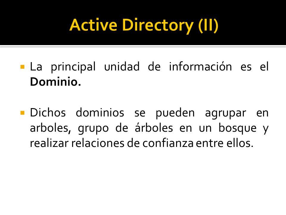  La principal unidad de información es el Dominio.