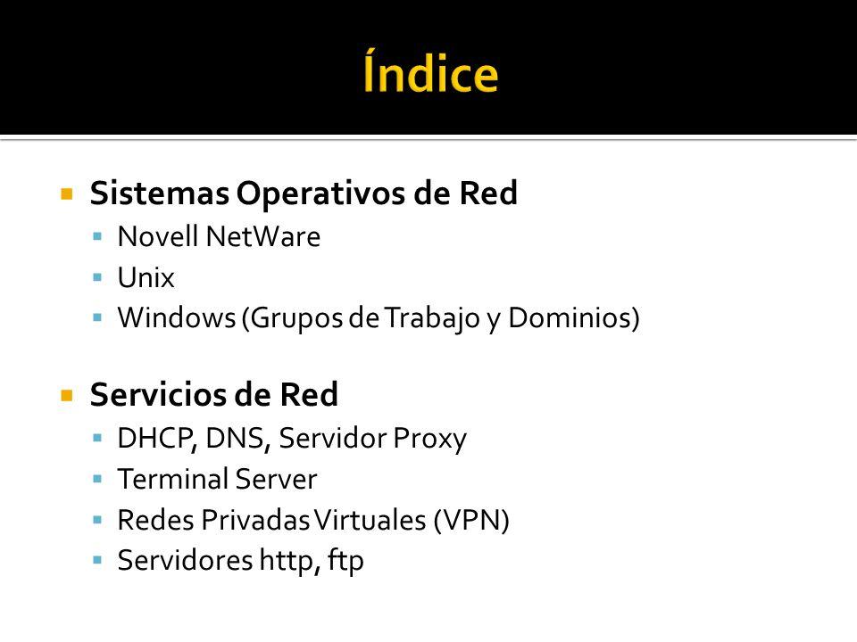 Sistemas Operativos de Red  Novell NetWare  Unix  Windows (Grupos de Trabajo y Dominios)  Servicios de Red  DHCP, DNS, Servidor Proxy  Terminal Server  Redes Privadas Virtuales (VPN)  Servidores http, ftp