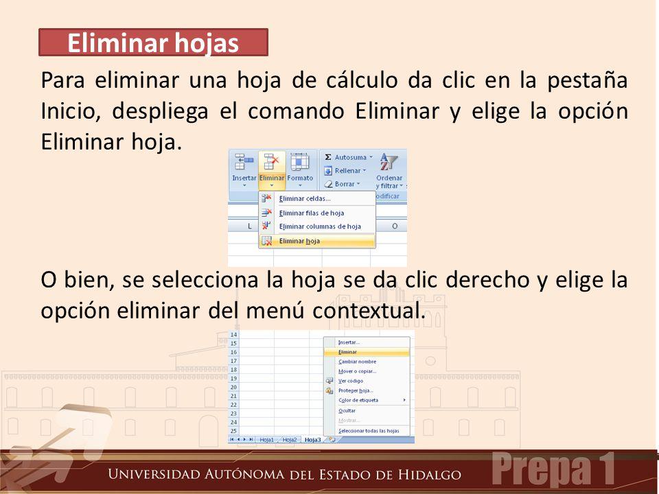 Para eliminar una hoja de cálculo da clic en la pestaña Inicio, despliega el comando Eliminar y elige la opción Eliminar hoja.