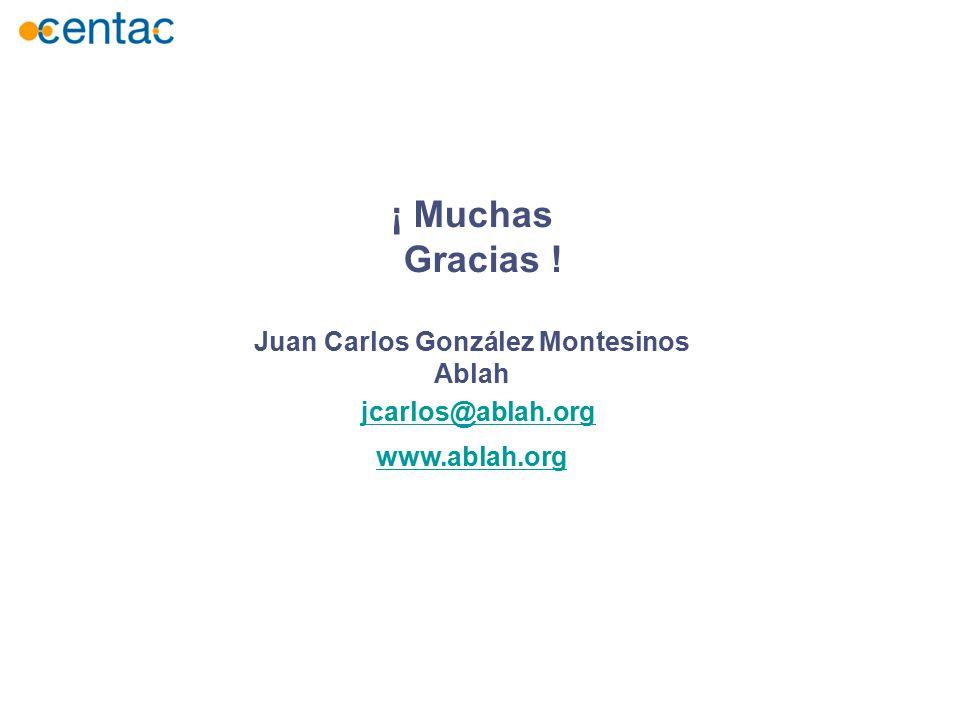 ¡ Muchas Gracias ! Juan Carlos González Montesinos Ablah www.ablah.org jcarlos@ablah.org