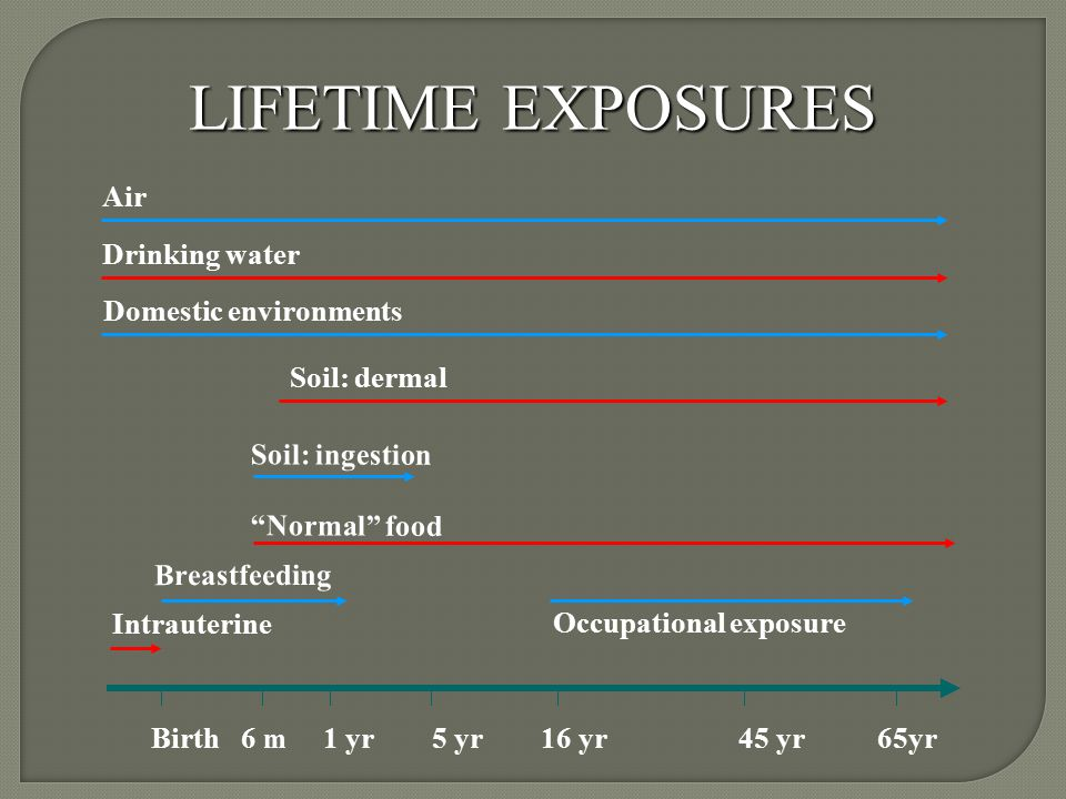 LIFETIME EXPOSURES Birth 6 m 1 yr 5 yr 16 yr 45 yr 65yr Intrauterine Breastfeeding Occupational exposure Normal food Soil: ingestion Soil: dermal Domestic environments Drinking water Air