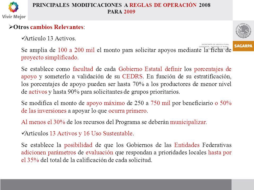  Otros cambios Relevantes: Artículo 13 Activos.
