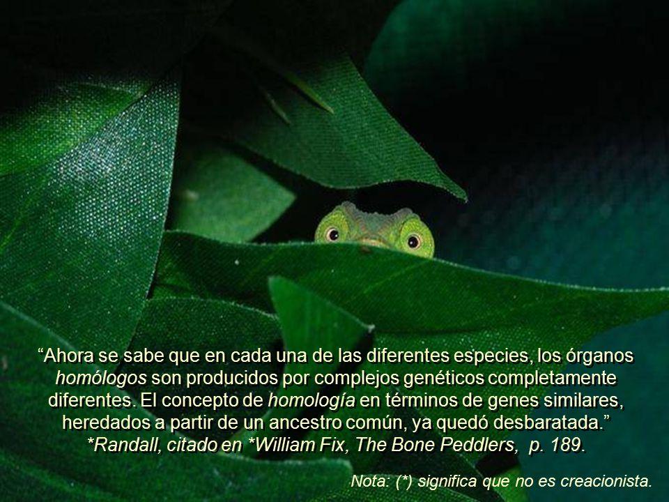 Los textos más antiguos sobre evolución, enfatizan mucho la idea de la homología (aparición de órganos iguales).