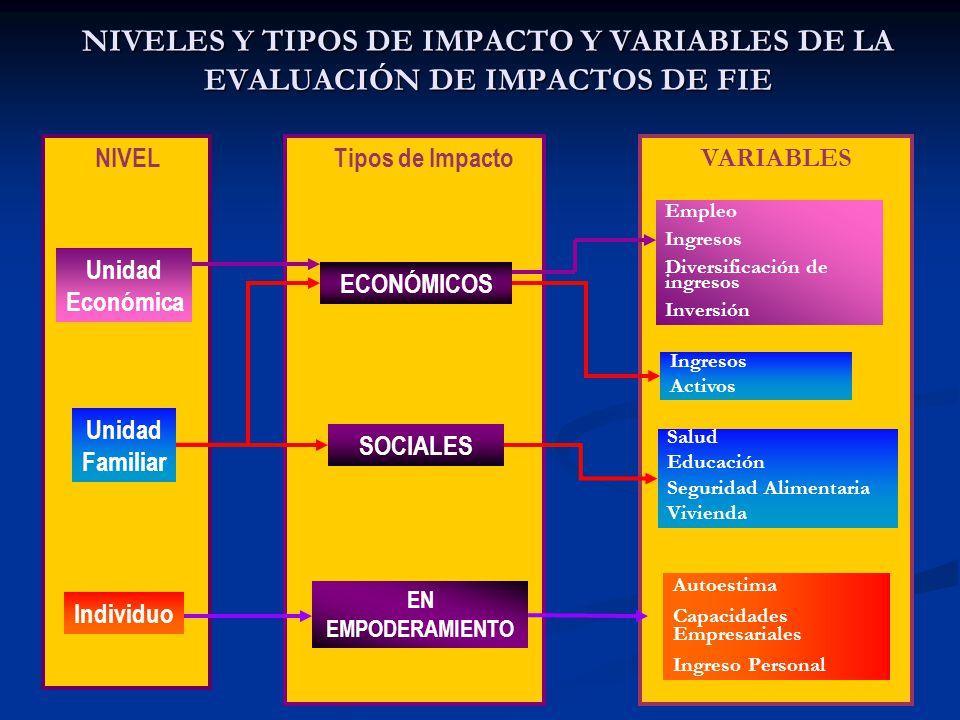 11 NIVELES Y TIPOS DE IMPACTO Y VARIABLES DE LA EVALUACIÓN DE IMPACTOS DE FIE NIVEL Unidad Económica Unidad Familiar Individuo Tipos de Impacto ECONÓMICOS SOCIALES EN EMPODERAMIENTO Empleo Ingresos Diversificación de ingresos Inversión Salud Educación Seguridad Alimentaria Vivienda Autoestima Capacidades Empresariales Ingreso Personal Ingresos Activos VARIABLES