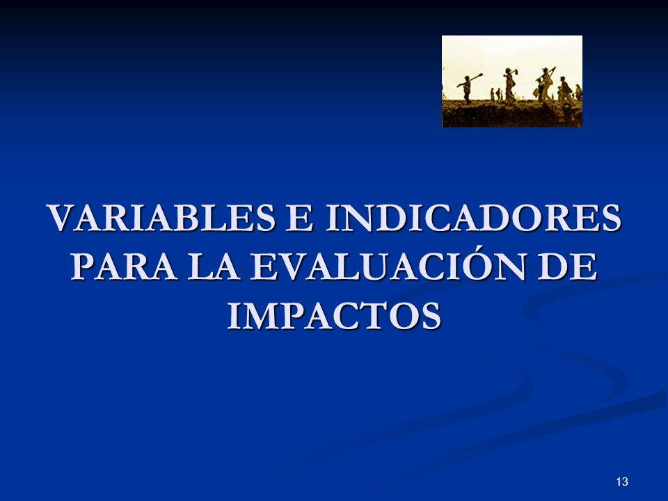 13 VARIABLES E INDICADORES PARA LA EVALUACIÓN DE IMPACTOS