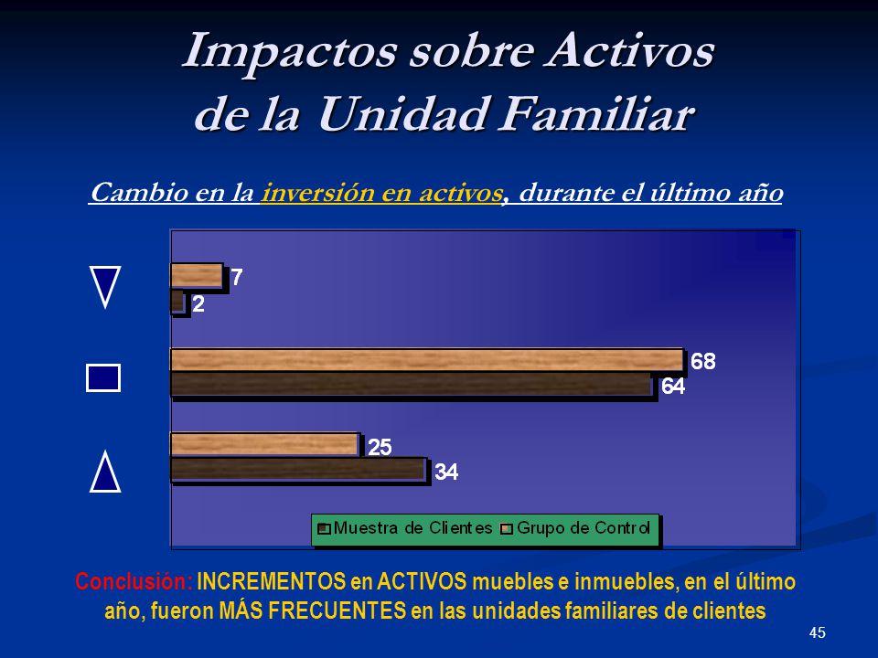 45 Impactos sobre Activos de la Unidad Familiar Impactos sobre Activos de la Unidad Familiar Cambio en la inversión en activos, durante el último año Conclusión: INCREMENTOS en ACTIVOS muebles e inmuebles, en el último año, fueron MÁS FRECUENTES en las unidades familiares de clientes