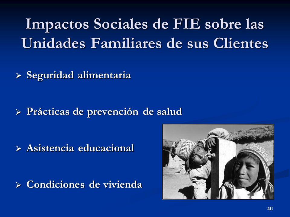 46 Impactos Sociales de FIE sobre las Unidades Familiares de sus Clientes  Seguridad alimentaria  Prácticas de prevención de salud  Asistencia educacional  Condiciones de vivienda