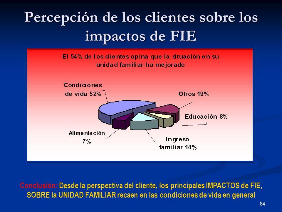 84 Percepción de los clientes sobre los impactos de FIE Conclusión: Desde la perspectiva del cliente, los principales IMPACTOS de FIE, SOBRE la UNIDAD FAMILIAR recaen en las condiciones de vida en general