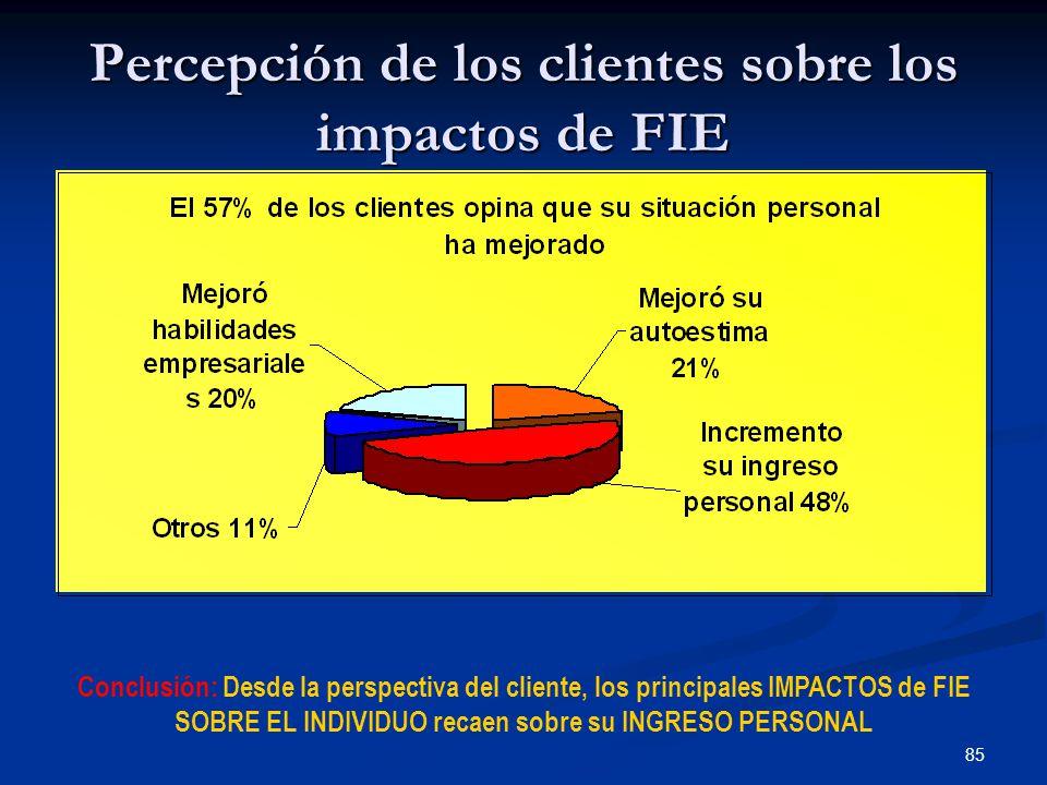 85 Percepción de los clientes sobre los impactos de FIE Conclusión: Desde la perspectiva del cliente, los principales IMPACTOS de FIE SOBRE EL INDIVIDUO recaen sobre su INGRESO PERSONAL