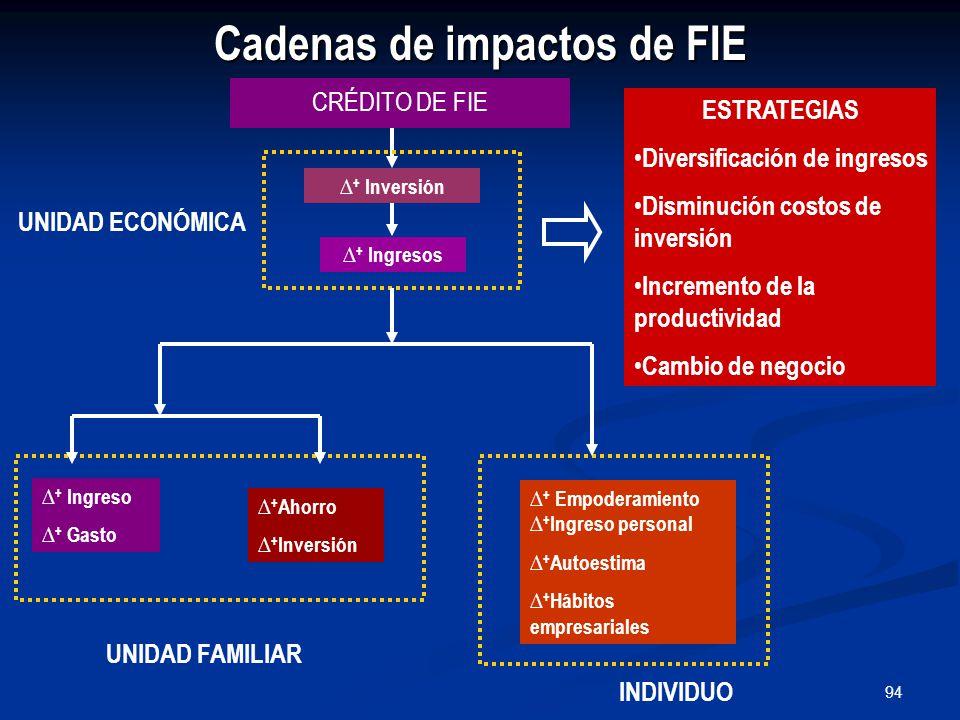 94 Cadenas de impactos de FIE CRÉDITO DE FIE UNIDAD FAMILIAR ∆ + Ingreso ∆ + Gasto ∆ + Ahorro ∆ + Inversión INDIVIDUO ∆ + Empoderamiento ∆ + Ingreso personal ∆ + Autoestima ∆ + Hábitos empresariales UNIDAD ECONÓMICA ∆ + Inversión ∆ + Ingresos ESTRATEGIAS Diversificación de ingresos Disminución costos de inversión Incremento de la productividad Cambio de negocio