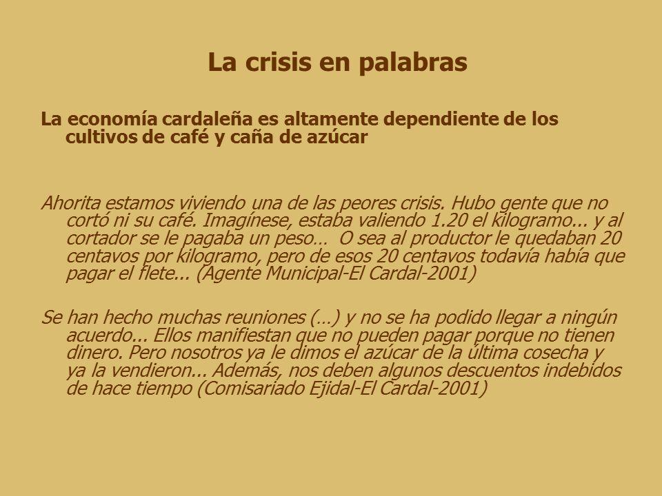 La crisis en palabras La economía cardaleña es altamente dependiente de los cultivos de café y caña de azúcar Ahorita estamos viviendo una de las peores crisis.