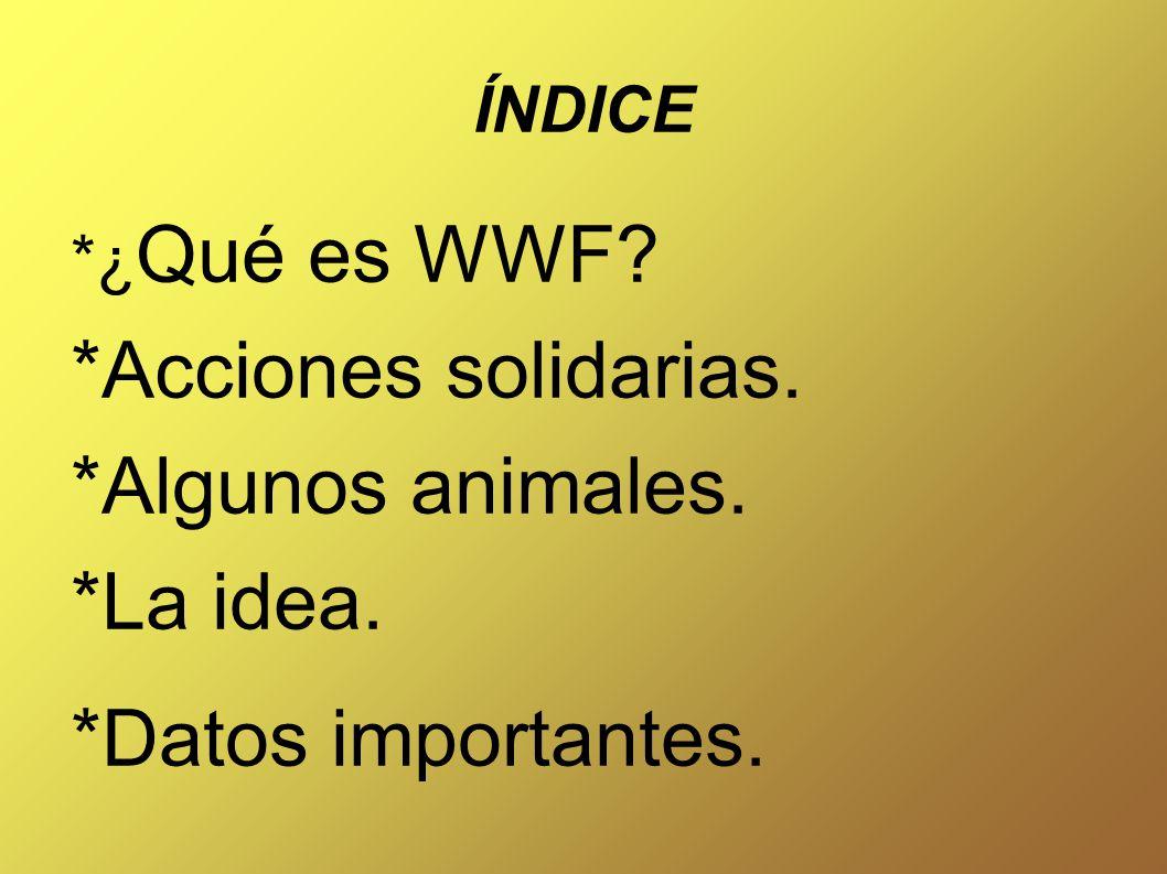 ÍNDICE *¿ Qué es WWF *Acciones solidarias. *Algunos animales. *La idea. *Datos importantes.