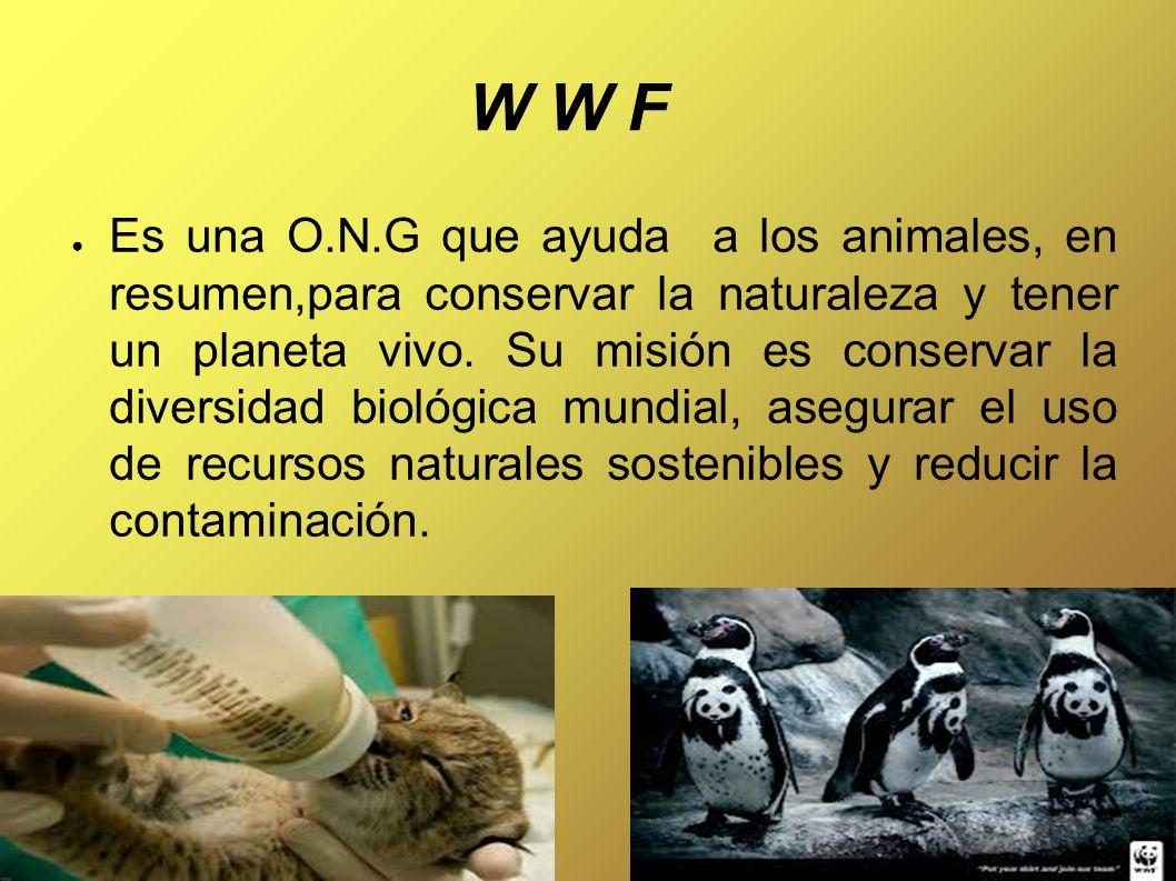 W W F ● Es una O.N.G que ayuda a los animales, en resumen,para conservar la naturaleza y tener un planeta vivo.