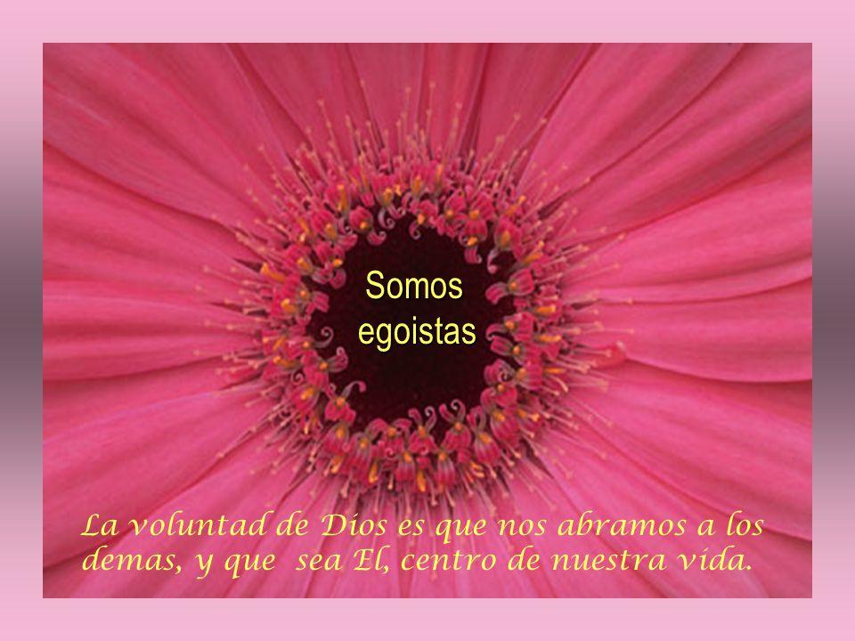 Somos egoistas Somos egoistas La voluntad de Dios es que nos abramos a los demas, y que sea El, centro de nuestra vida.
