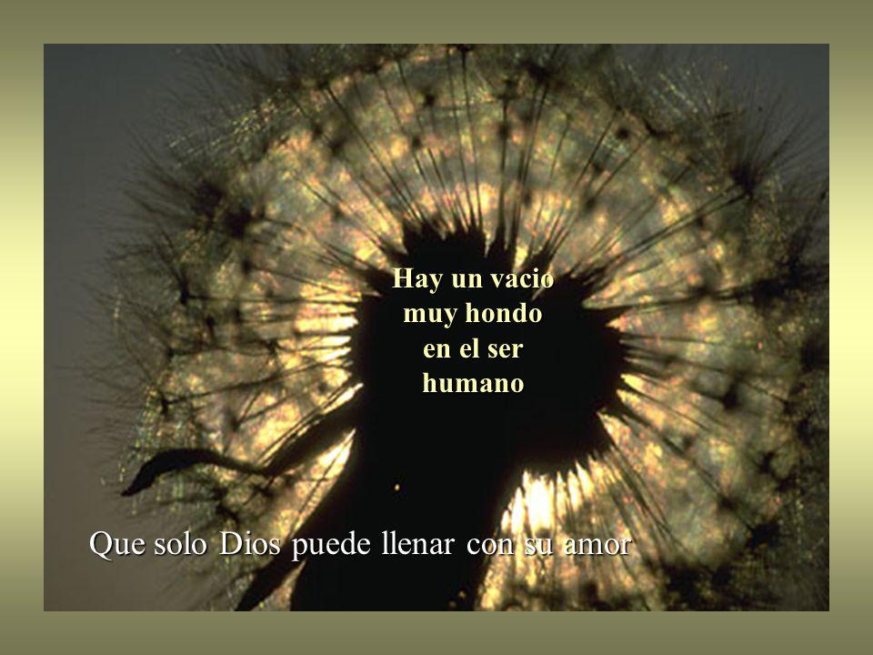 Hay un vacio muy hondo en el ser humano Que solo Dios puede llenar con su amor