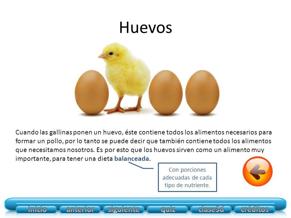 Huevos Cuando las gallinas ponen un huevo, éste contiene todos los alimentos necesarios para formar un pollo, por lo tanto se puede decir que también contiene todos los alimentos que necesitamos nosotros.