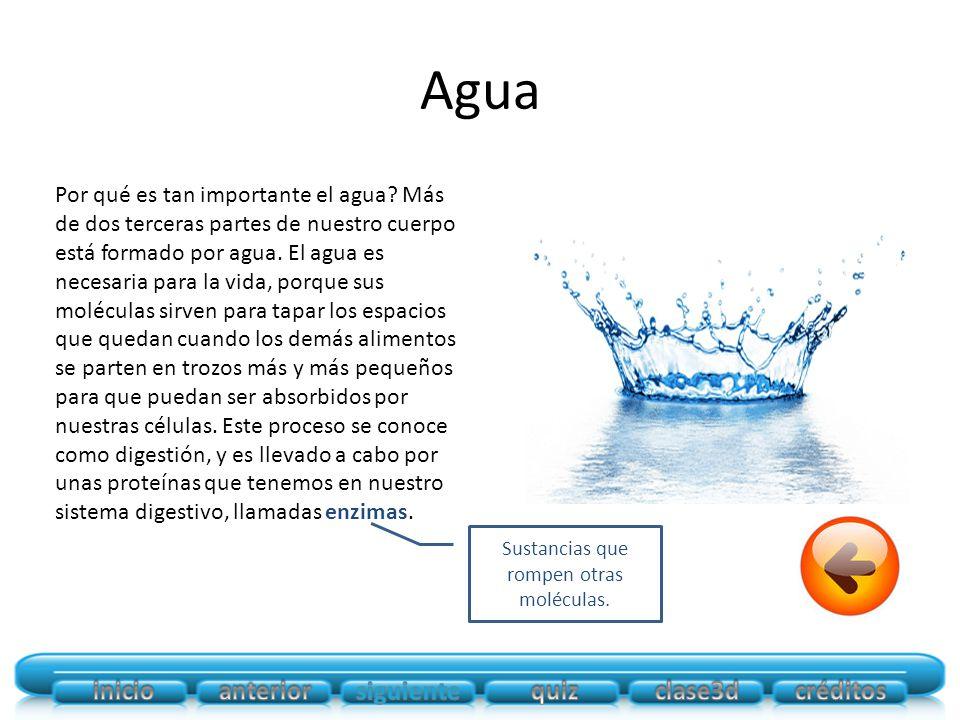 Agua Por qué es tan importante el agua.