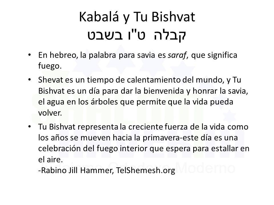Kabalá y Tu Bishvat ט ו בשבט קבלה En hebreo, la palabra para savia es saraf, que significa fuego.