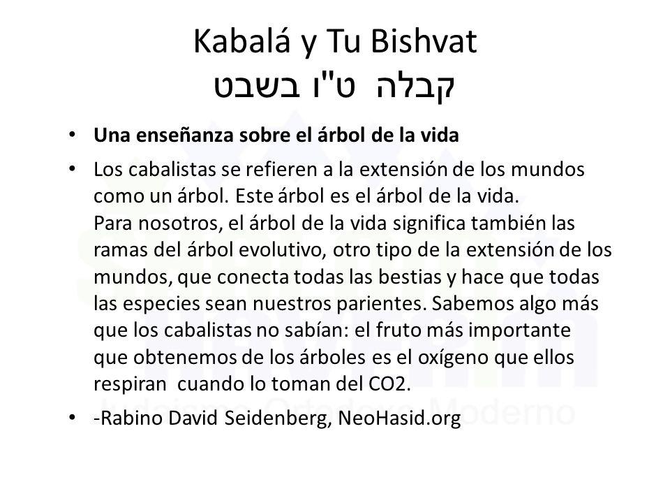 Kabalá y Tu Bishvat ט ו בשבט קבלה Una enseñanza sobre el árbol de la vida Los cabalistas se refieren a la extensión de los mundos como un árbol.