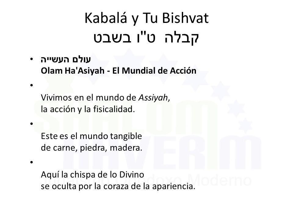 Kabalá y Tu Bishvat ט ו בשבט קבלה עולם העשייה Olam Ha Asiyah - El Mundial de Acción Vivimos en el mundo de Assiyah, la acción y la fisicalidad.