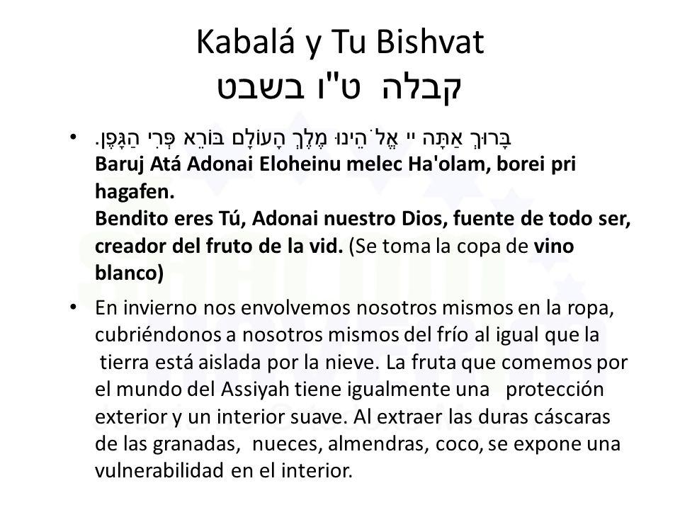 Kabalá y Tu Bishvat ט ו בשבט קבלה בָּרוּךְ אַתָּה יי אֱלֹהֵינוּ מֶלֶךְ הָעוֹלָם בּוֹרֵא פְּרִי הַגָּפֶן.