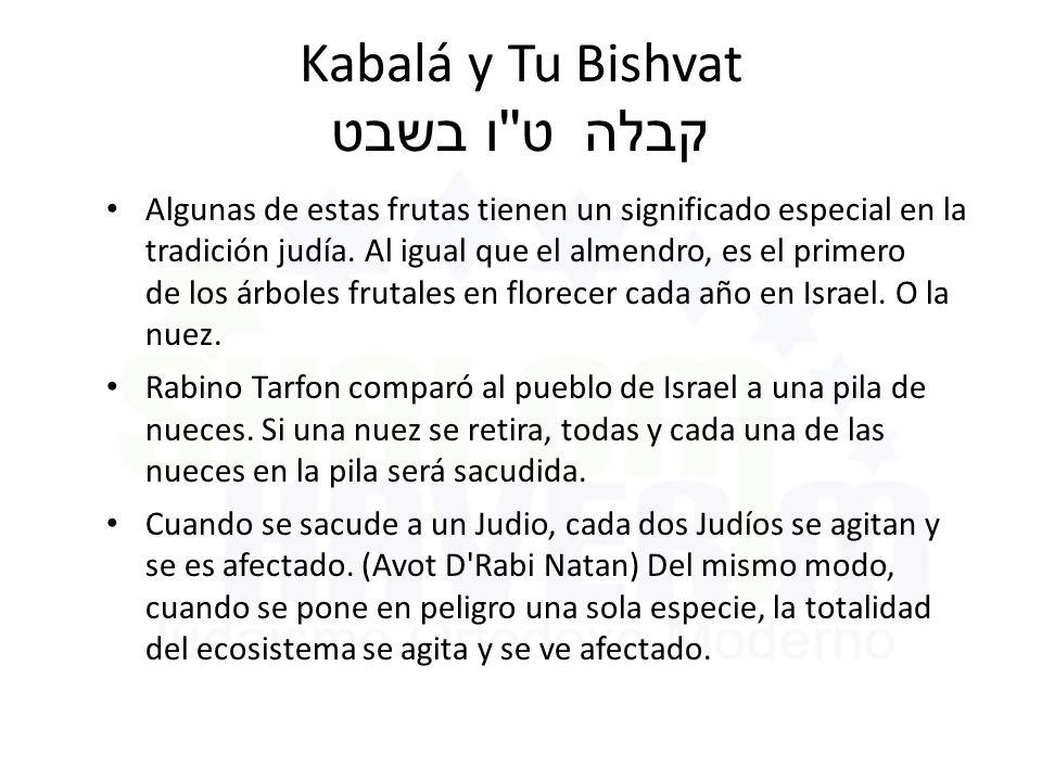 Kabalá y Tu Bishvat ט ו בשבט קבלה Algunas de estas frutas tienen un significado especial en la tradición judía.