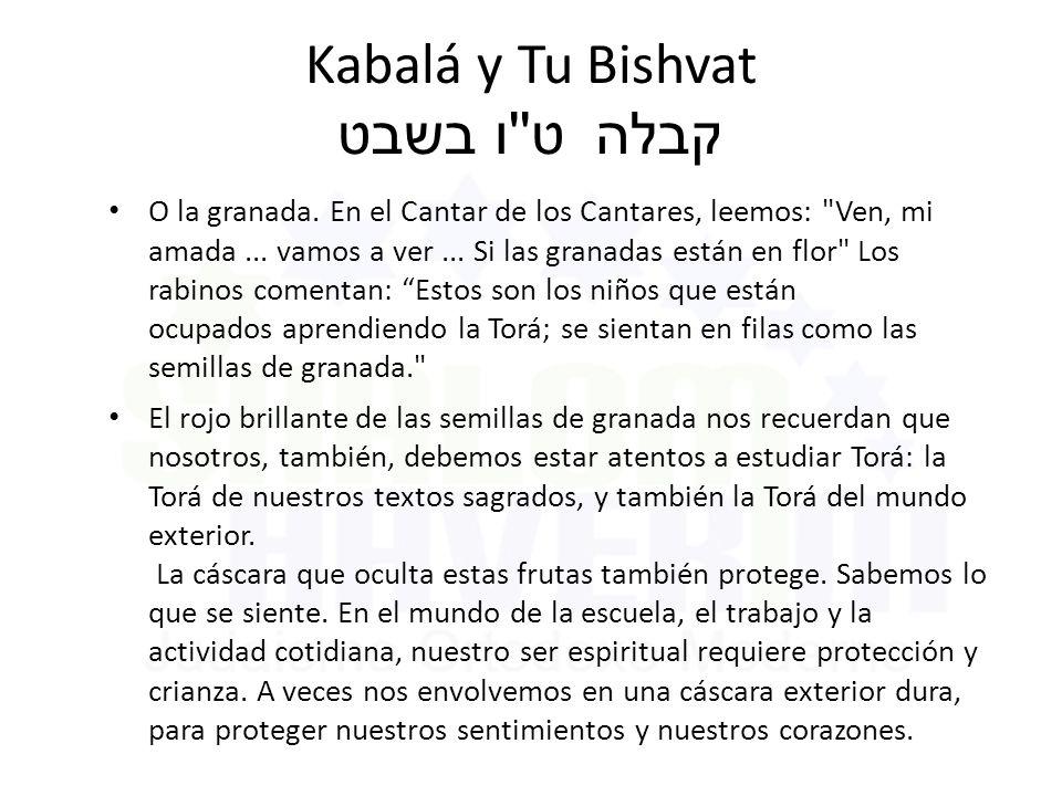 Kabalá y Tu Bishvat ט ו בשבט קבלה O la granada.