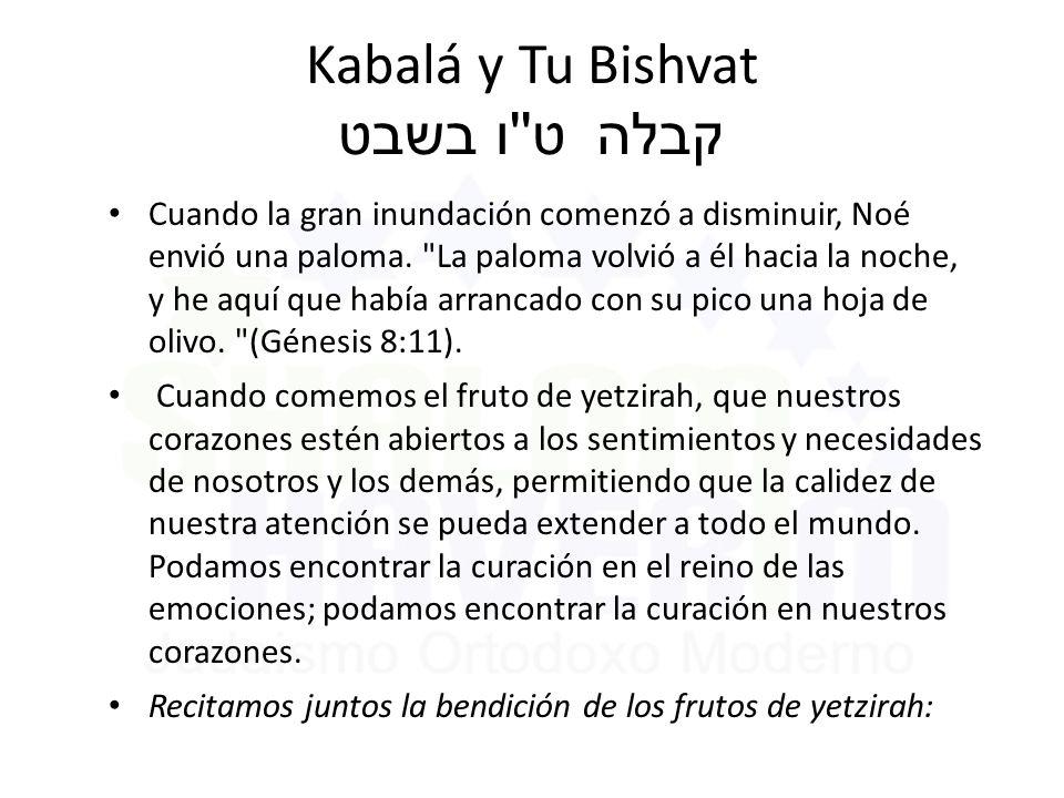 Kabalá y Tu Bishvat ט ו בשבט קבלה Cuando la gran inundación comenzó a disminuir, Noé envió una paloma.