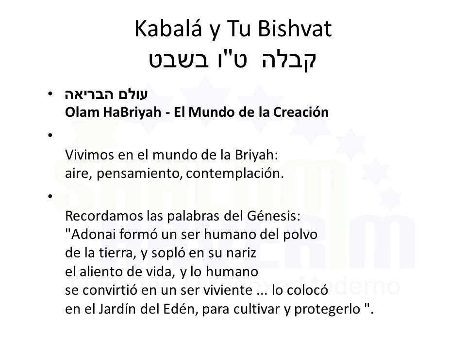Kabalá y Tu Bishvat ט ו בשבט קבלה עולם הבריאה Olam HaBriyah - El Mundo de la Creación Vivimos en el mundo de la Briyah: aire, pensamiento, contemplación.