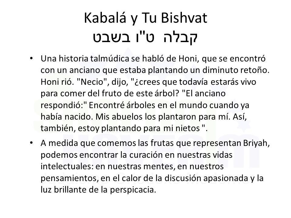 Kabalá y Tu Bishvat ט ו בשבט קבלה Una historia talmúdica se habló de Honi, que se encontró con un anciano que estaba plantando un diminuto retoño.